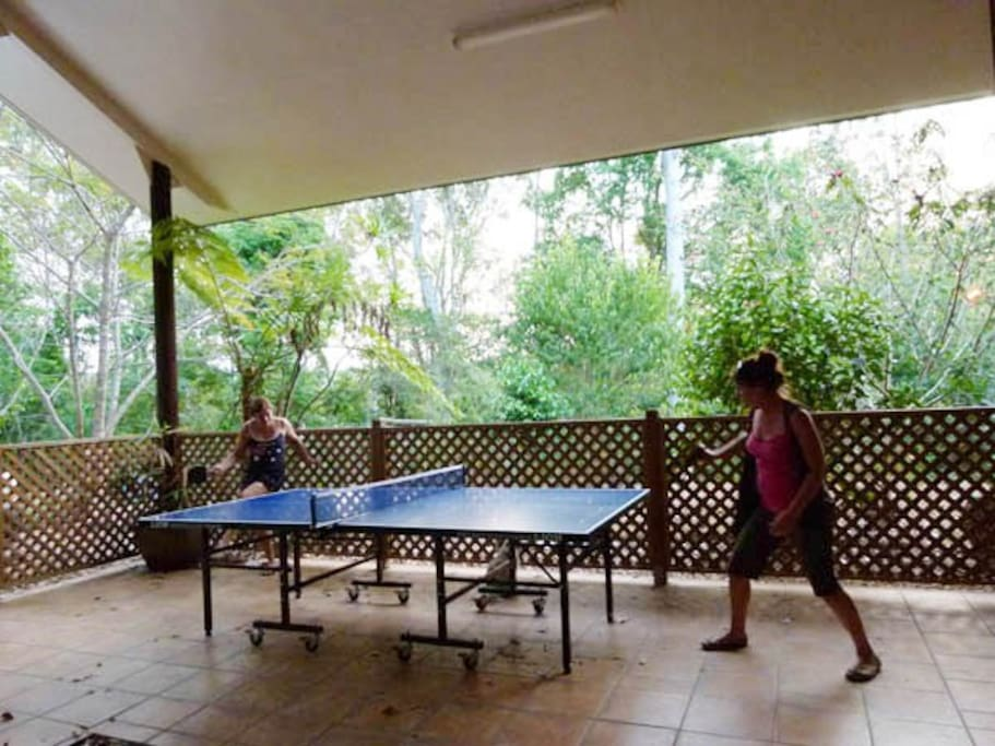For your enjoyment table tennis