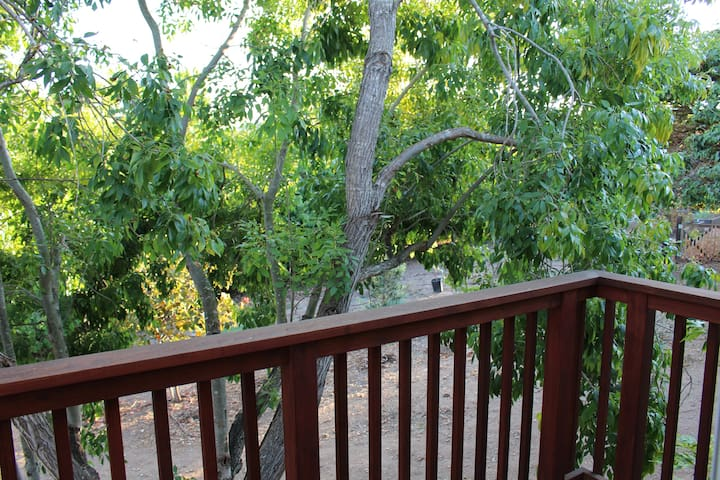 Balcony overlooking the farm and orchard