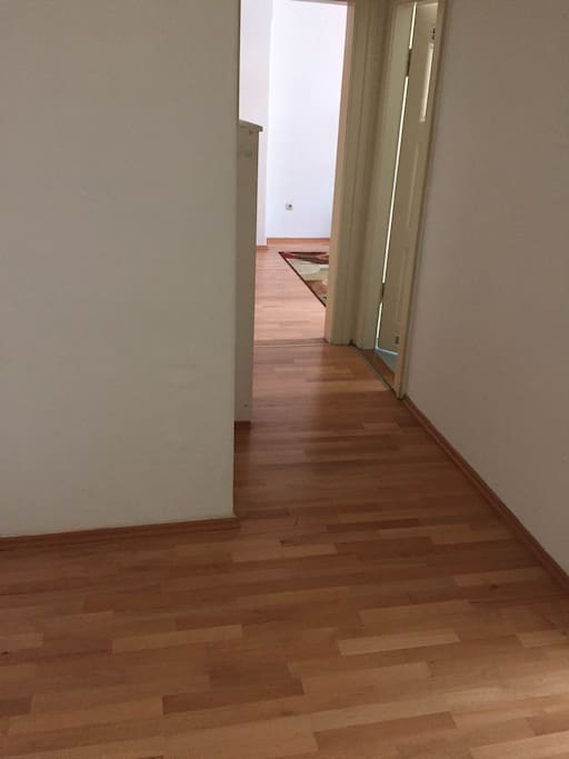 The corridor leading to kitchen, bathroom and the bedroom