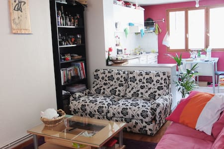 Shared appartement in Lille center
