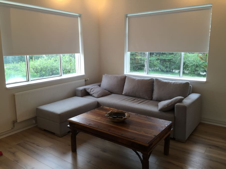 Living room area with a sofabed.