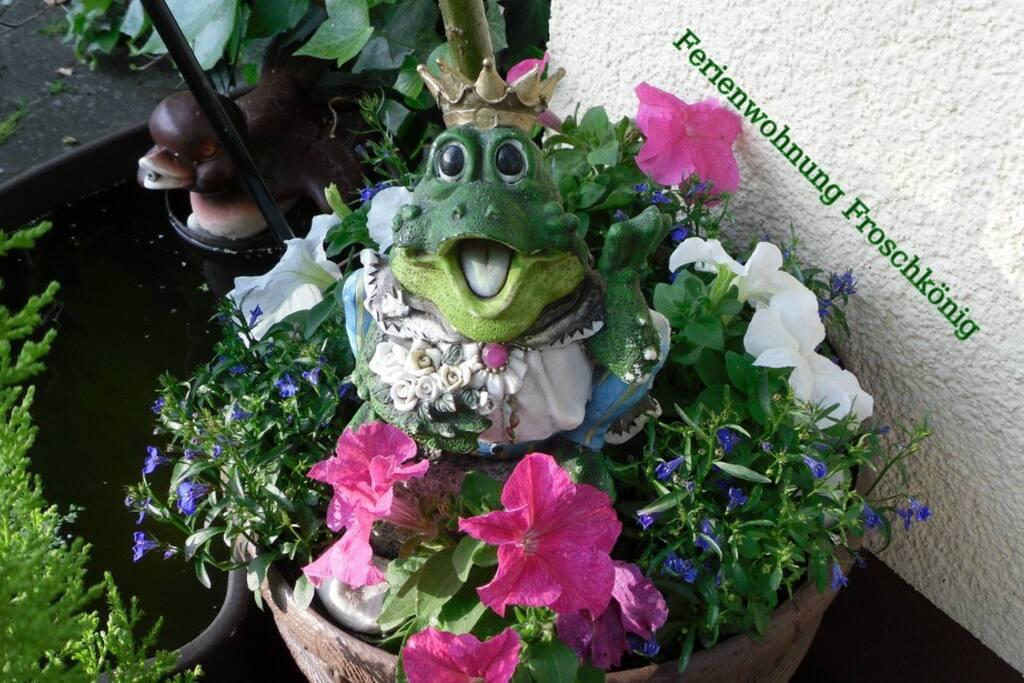 Frogprince /Froschkönig