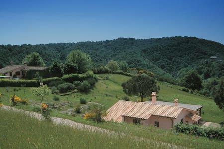 Guest Villa: 3 Bedrooms, swim pool. - Campagnano di Roma - Villa