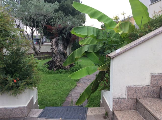 Bright apartment Loft with pool - Castelnuovo del Garda