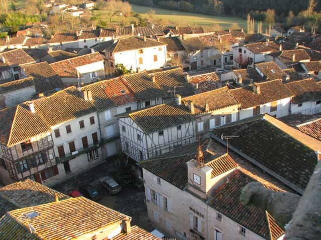 Gite de Montricoux - Spacious Villa - Montricoux - House
