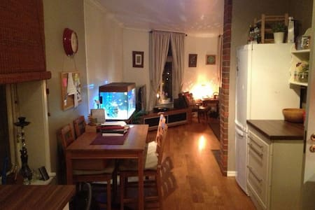 Cozy apartment in the city center - Hamar