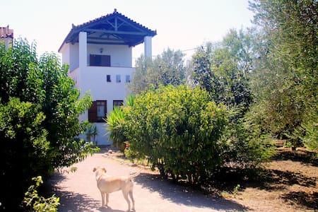 Villa Selana-inspired by Molyvos - Mithimna