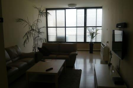 shraga zur - Apartament