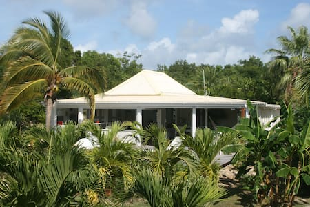 Lodge antillais dans une palmeraie - Grand-Case