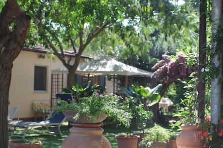 Casa a 3km da Baratti con Giardino - Populonia - Rumah