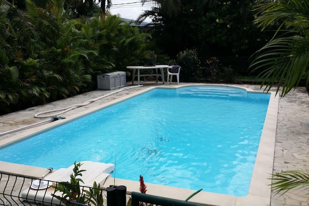 grande piscine sécurisée et bien entourée de verdure