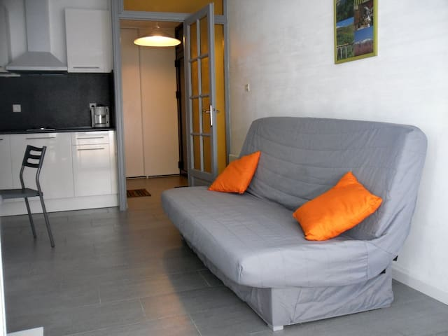 Grand studio cabine de 30m² confortable sud ouest - Saint-Cyprien - Appartement
