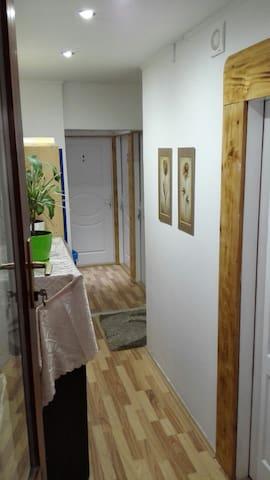 Hostel Zrenjanin,5€ day/person - Zrenjanin - Bed & Breakfast