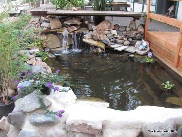 Koi pond at front deck entry
