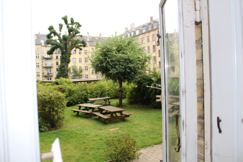 Garden (view from bedroom)