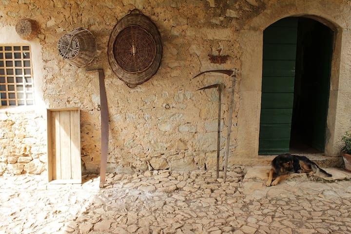 Tenuta di Cascano, rustic farmhouse - sonnino