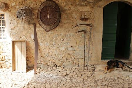 Tenuta di Cascano, rustic farmhouse - sonnino - Hus