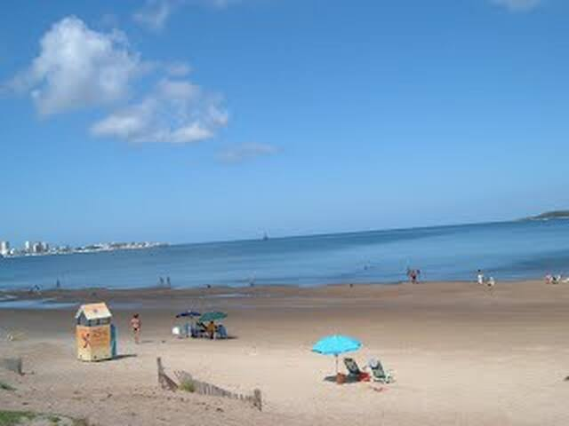 One of the best beaches of Punta del Este, spacious and very familiar