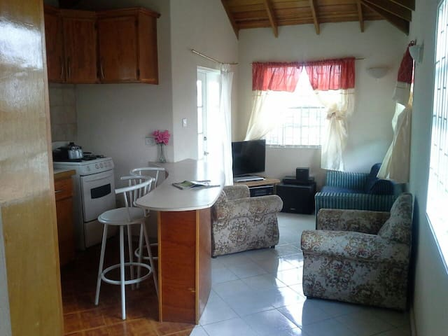 Private room for rent - Bridgetown - Lejlighed