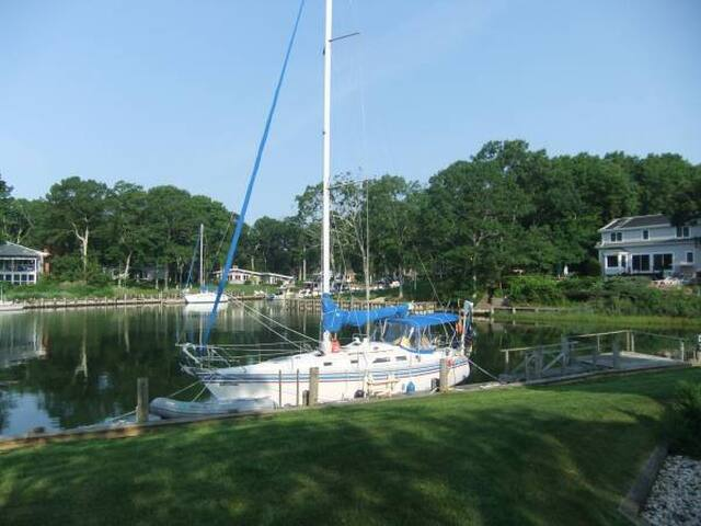 On-the-water-The Hamptons/Greenport - Greenport - Barco