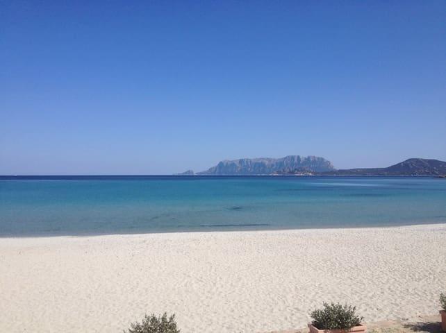 Pittulongu beach, 10 min walking from the apartment.