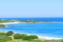 Nearby beach of Cala Banana.