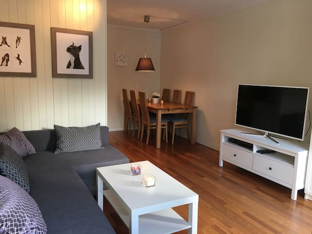 Charming apartment, easy access to central Oslo - Oslo - Apartment