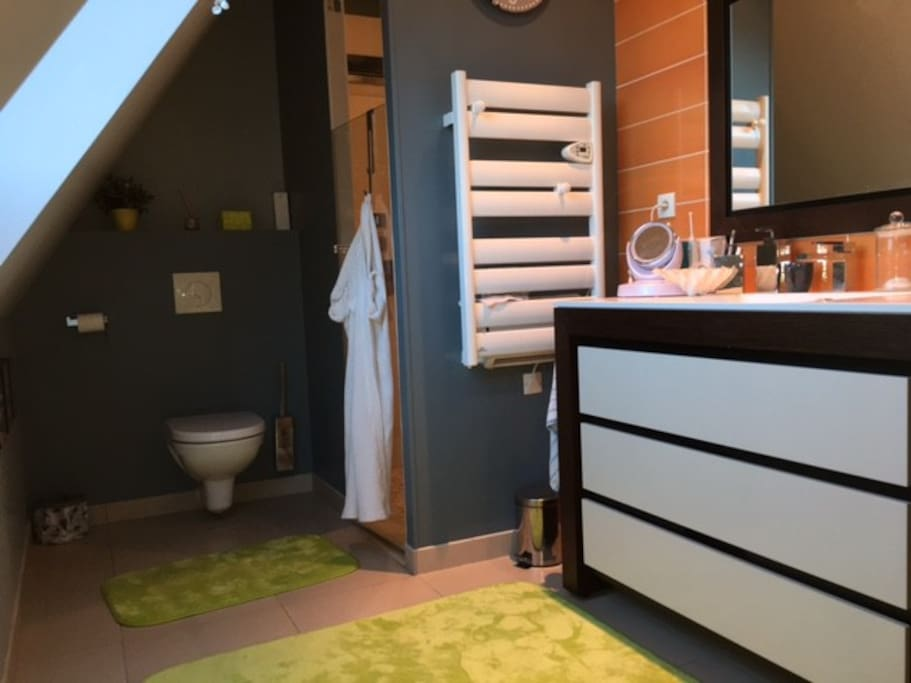 Salle de bain ,douche à l'italienne; wc