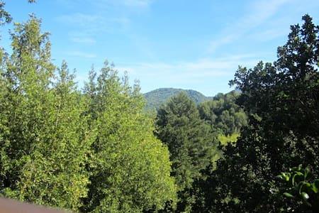 Beautiful & serene Fairfax retreat