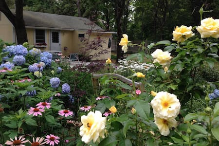 Daffodil Cottages - Brewster