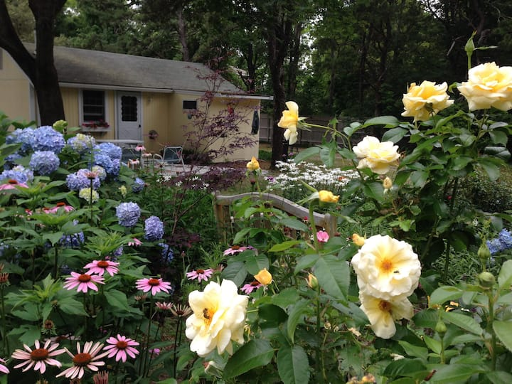 Daffodil Cottages #45