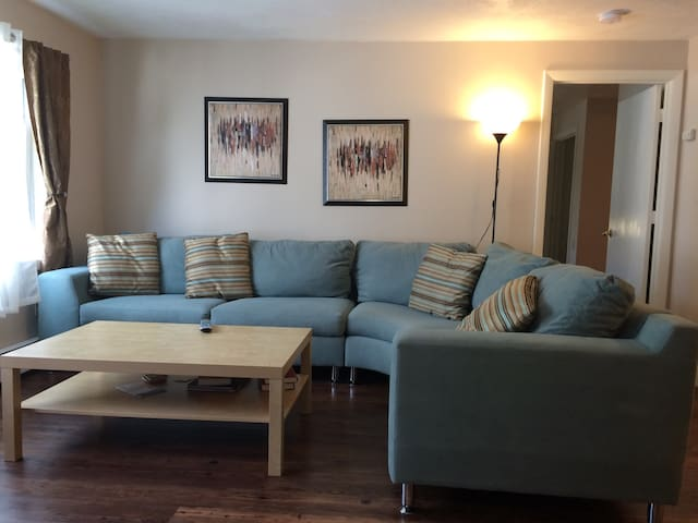 Worcester Umass Comfortable Condo - Worcester - Apartment