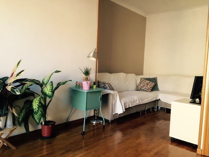 Spacious room in the city center