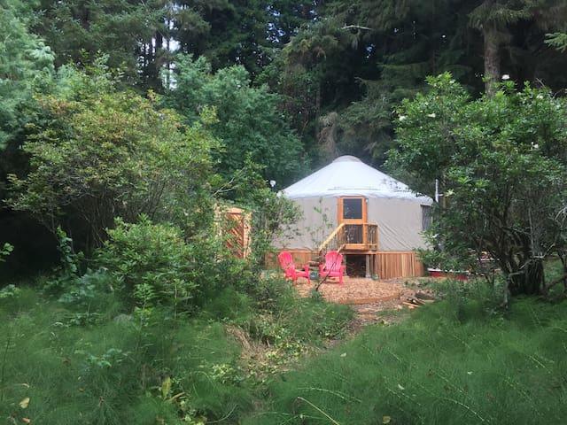 Fiddlehead Yurt - Arcata - Bayside