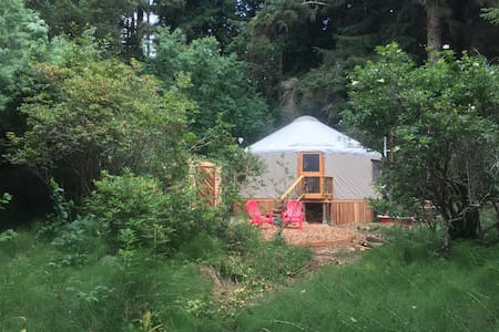 Fiddlehead Yurt - Arcata - Yurt