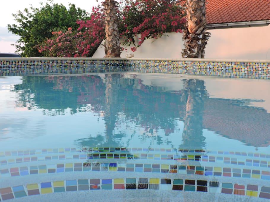 Het ruime privè zwembad.