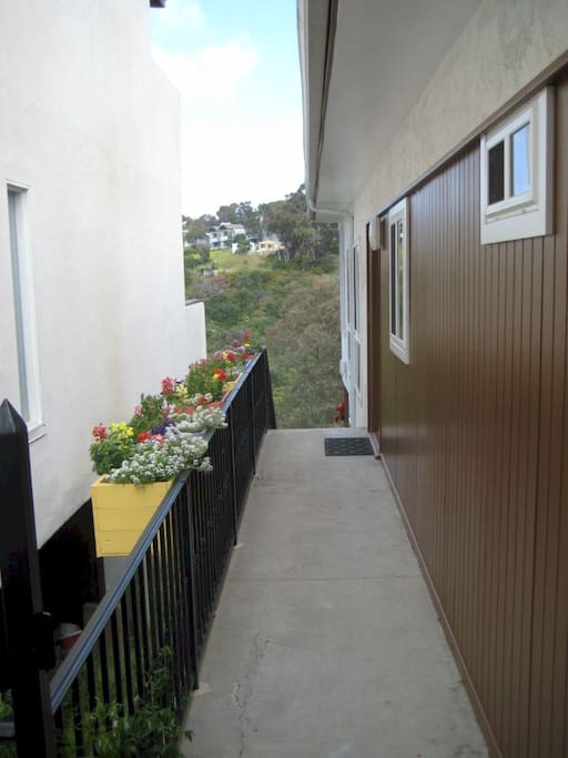 Walkway to front door. Can access one bedroom, one bathroom, living room, kitchen and dining room without any stairs.