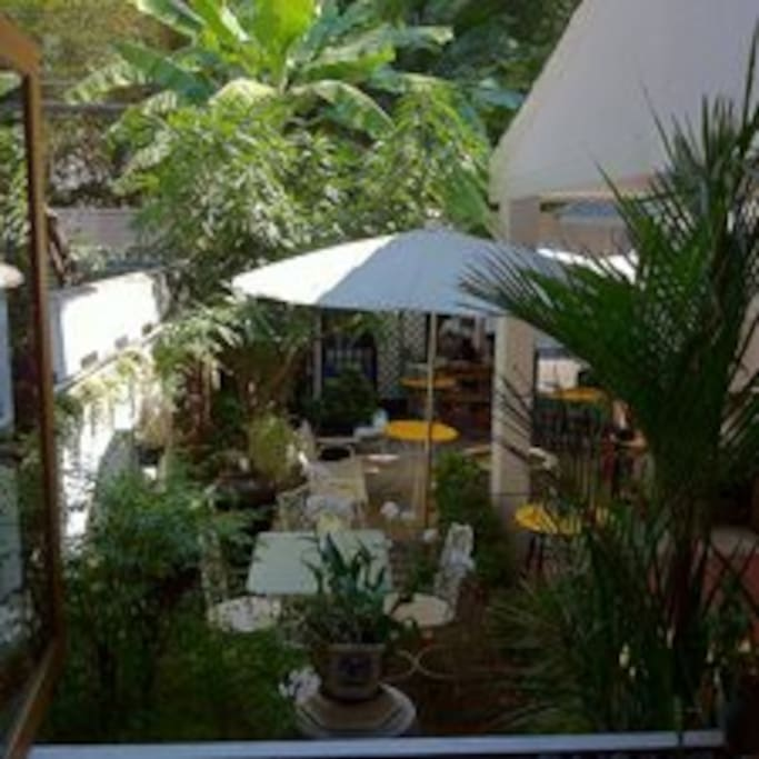 View into the Herma House garden from the open windows of the downstairs living room