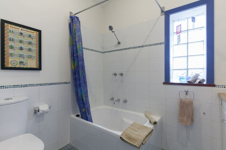 Shower over small bath