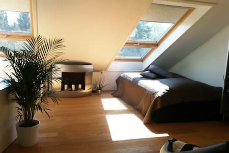 Perfectly located near Frankfurt  - Eschborn - House