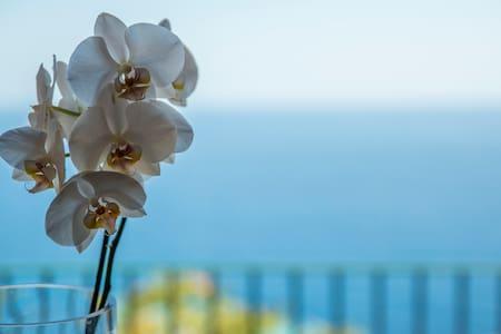 Villa al mare vista Portofino - Pieve Ligure - วิลล่า
