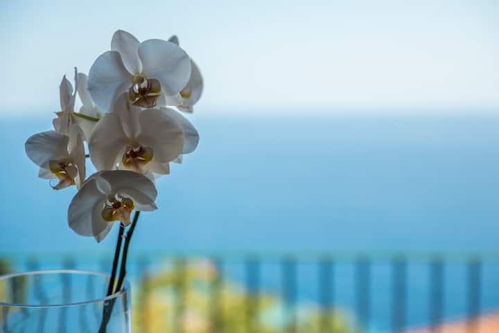 Villa al mare vista Portofino