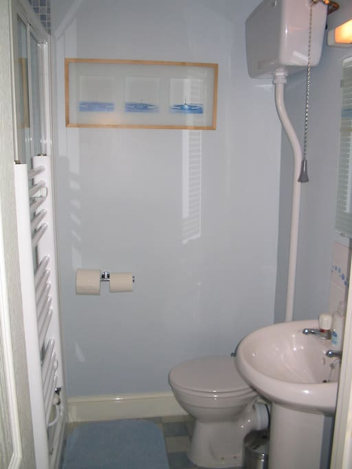 Shower room in the twin en suite.