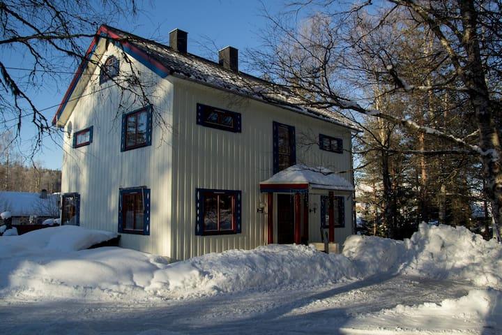Winter & Summer house near Trysil