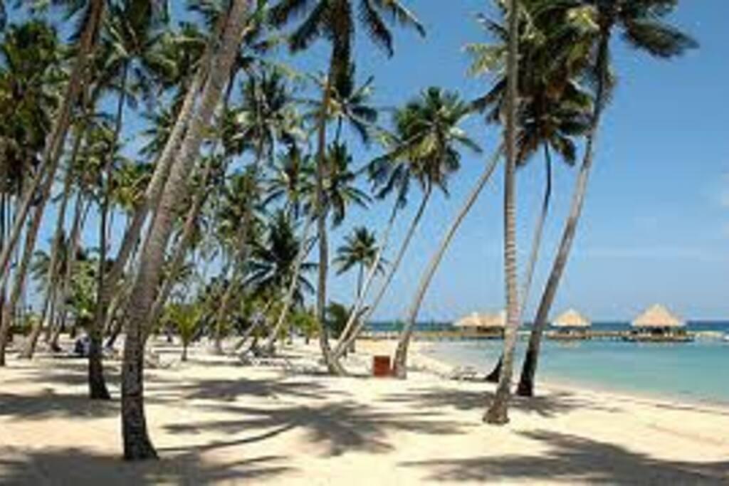 White sandy beach.