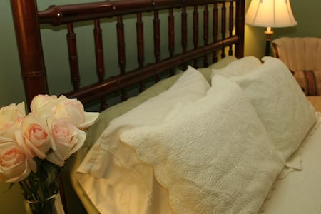 Lafayette Square 1 mi from downtown - St. Louis - Bed & Breakfast