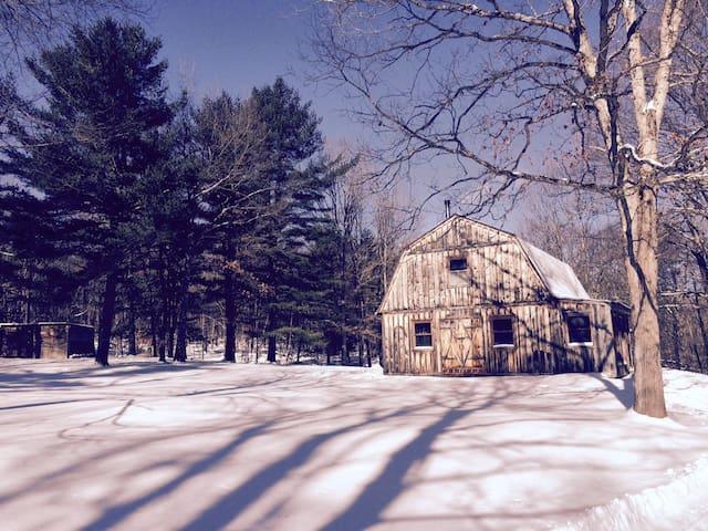 Super Quiet Rustic/Modern Hudson/Berkshire Escape - Craryville - Dom
