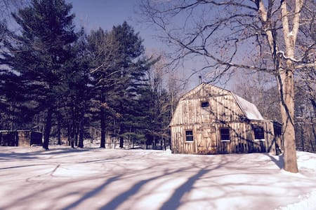 Super Quiet Rustic/Modern Hudson/Berkshire Escape - Craryville - House