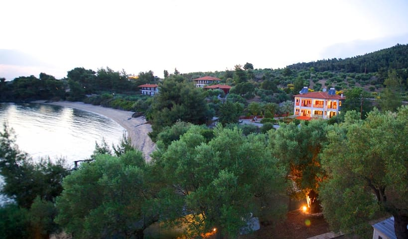 Panoramic view of Kohyli studios