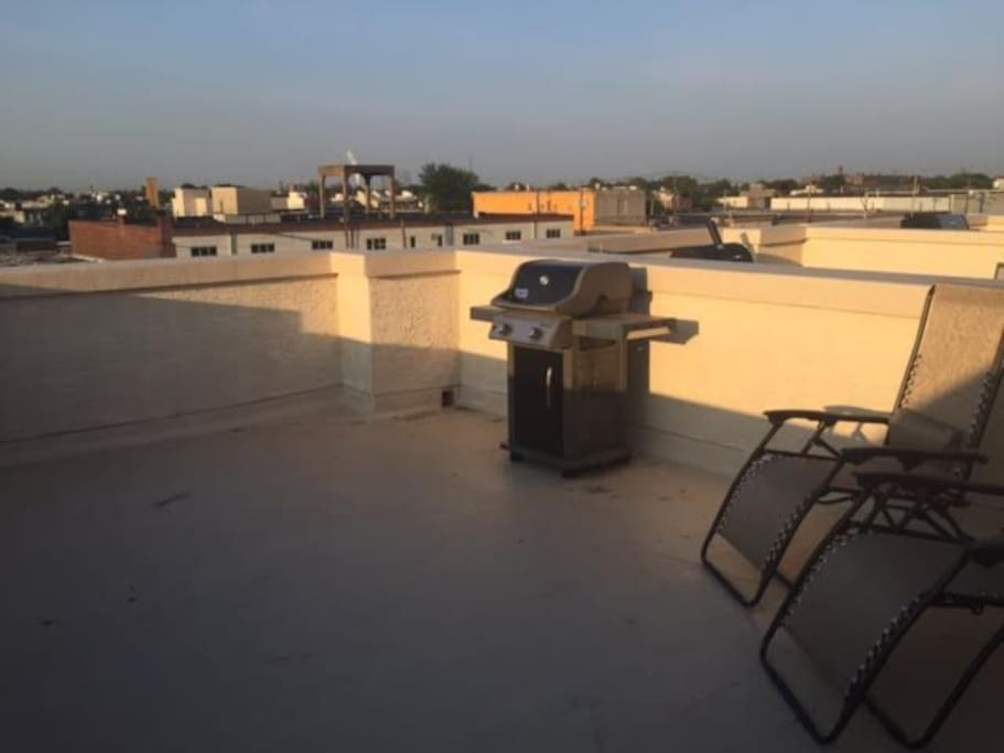 Roof deck view facing south